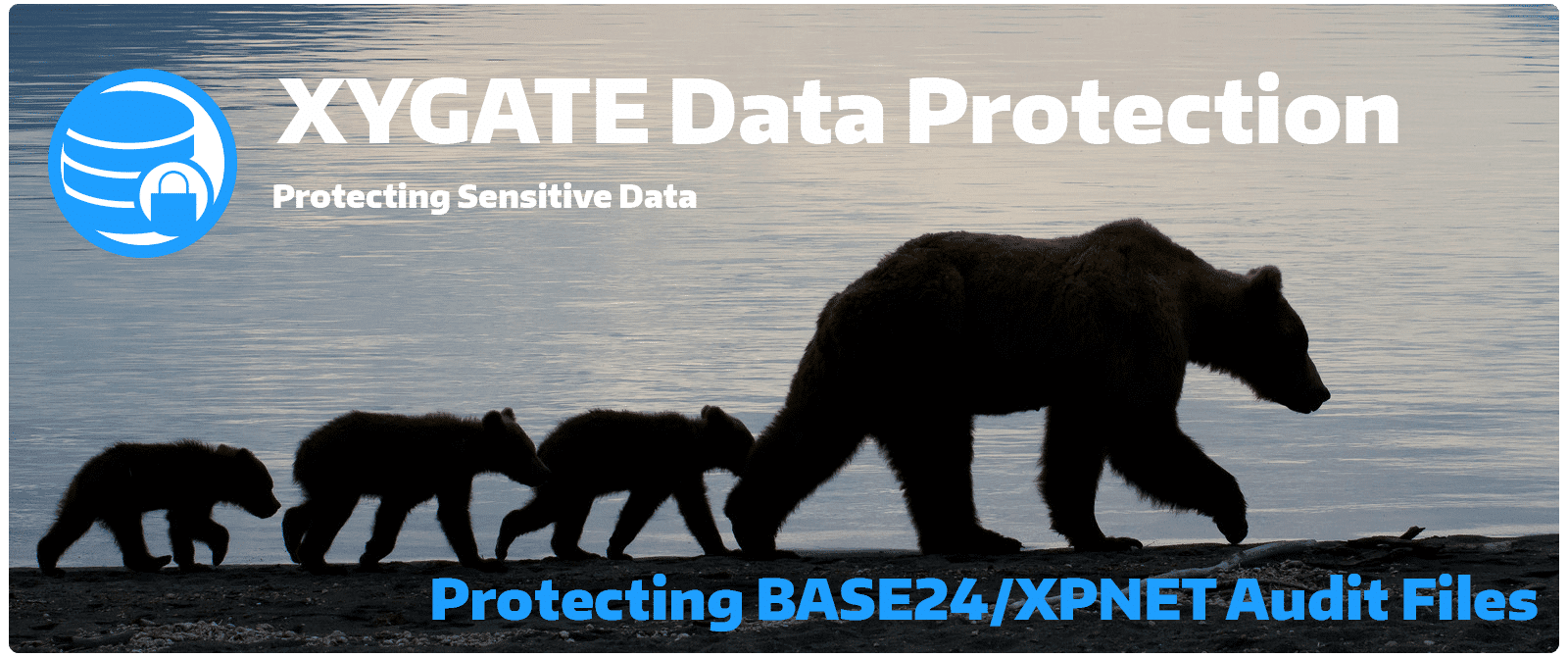 XDP Protecting BASE24 XPNET